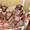 Щенки левретки от титулованных родителей #720685