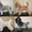Стрижка собак в Астрахани #561148