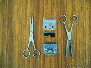 Научу точить маникюрные, парикмахерские и грумерские инструменты - Изображение #2, Объявление #1161414