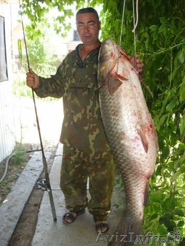 недорогая рыбалка в харабали