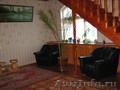 Финиковая пальма,  комнатное растение